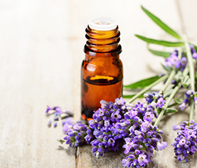 image of essential oils 101—are holiday scents therapeutic?